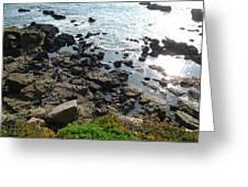 Land And Sea Greeting Card