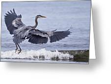 Landing With The Wave Greeting Card