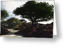 Landscape 082510 Greeting Card