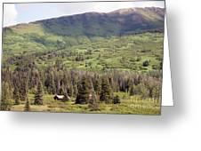 Landscape Alaska  Greeting Card