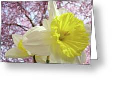 Landscape Daffodils Flowers Art Pink Tree Blossoms Spring Baslee Greeting Card