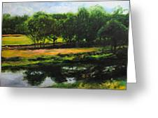 Landscape In North Wales Greeting Card