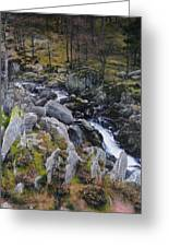 Landscape In Snowdonia Greeting Card
