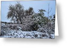 Landscape In The Snow Greeting Card