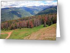 Landscape In Vail Greeting Card