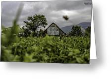 Landscape Photo In Nature Greeting Card