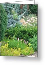 Landscape Sampler Greeting Card