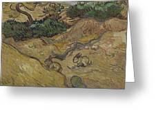 Landscape With Rabbits Saint Remy De Provence December 1889 Vincent Van Gogh 1853  1890 Greeting Card