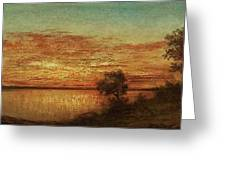 Landscape With Trees At The Rivers Greeting Card