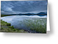 Landscape With Water Grass Greeting Card
