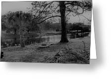 Langan Park In Black And White Greeting Card
