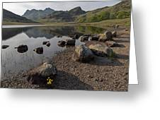 Langdale Pikes And Blea Tarn Greeting Card