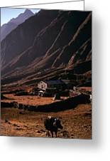 Langtang Village Greeting Card