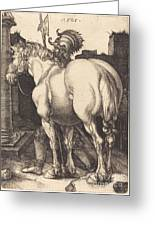 Large Horse Greeting Card