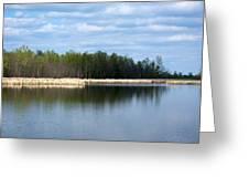 Large Pond Greeting Card