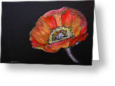 Large Poppy Greeting Card