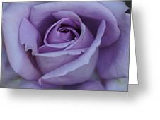 Large Purple Rose Center - 002 Greeting Card