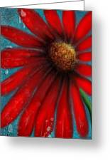 Large Red Flower Greeting Card