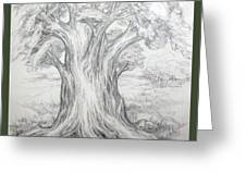 Large Shady Tree Greeting Card