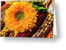 Large Sunflower On Indian Corn Greeting Card