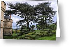 Large Trees At Chateau De Chaumont Greeting Card