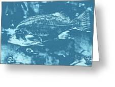 Largemouth Bass 8 Greeting Card