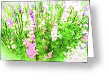 Larkspur Flowers In Soft Oil Style Greeting Card