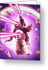 Laser Eyes Space Cat Riding Sloth, Dog - Rainbow Greeting Card