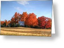 Last Color On The Farm Greeting Card