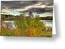 Last Flower Of Fall Greeting Card
