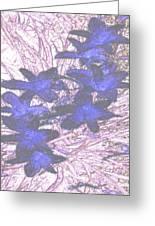 Last Frozen Flowers Greeting Card