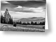 Last Light Of Day In Bw Greeting Card
