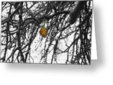 Last One To Fall Greeting Card