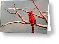 Last Snow Of Winter, Cardinal Greeting Card