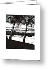 Late Afternoon At Dunk Island Greeting Card