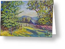 Late Afternoon Shadows Greeting Card