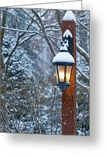 Late Afternoon Snow Greeting Card by Sandra Bronstein