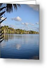 Late Afternoon Sunlight II Greeting Card