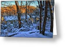 Late Afternoon Winter Light Greeting Card