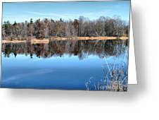 Late Autumn Reflections Greeting Card