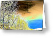 Late Autumn Greeting Card by Will Borden