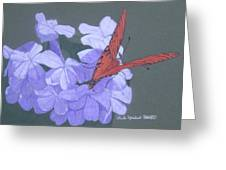 Late Bloomers Greeting Card