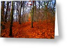 Late Fall In The Woods Greeting Card