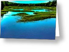 Late May On The Moose River Greeting Card