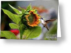 Late Spring Greeting Card