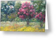 Late Summer - Ladybird Lake Trail Greeting Card