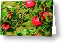 Late Summer Apples Greeting Card