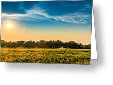 Late Summer Evening Greeting Card