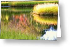 Stillness Of Late Summer Marsh  Greeting Card
