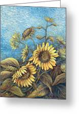Late Sunflowers  Greeting Card